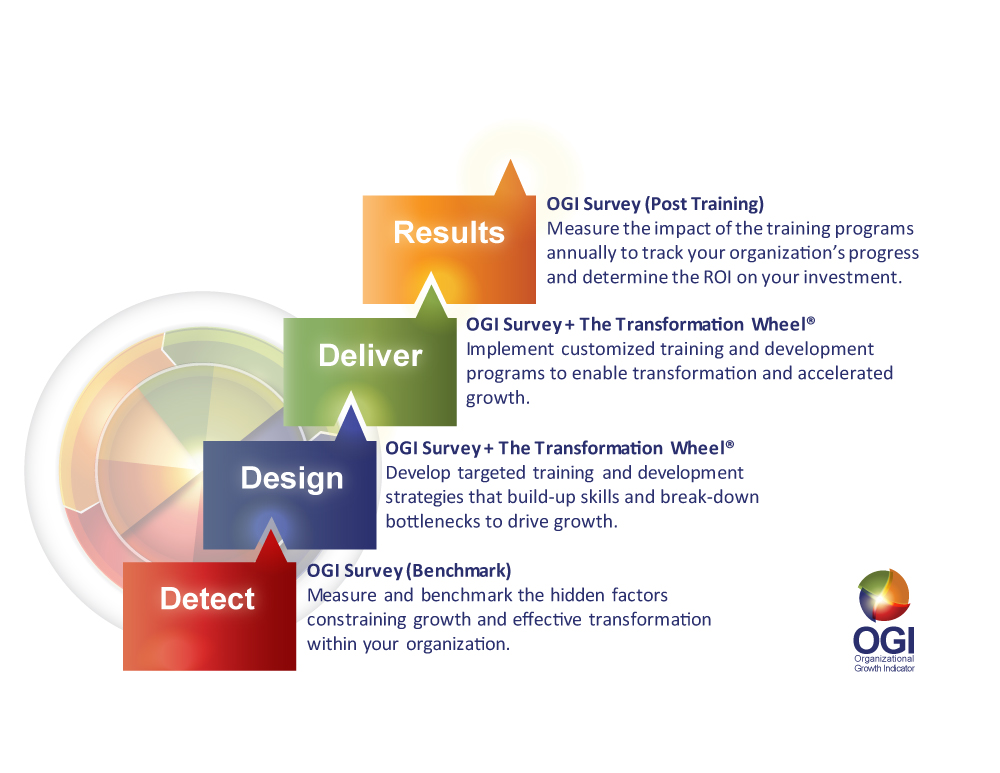 The OGI Process Graphic